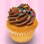 Butter Yellow Cupcake - Chocolate Buttercream
