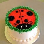 Ladybug Layer Cake