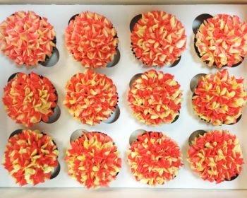 Hydrangea Cupcakes - Pink