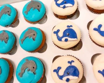 Sea Creature Cupcakes - Dolphin & Whale