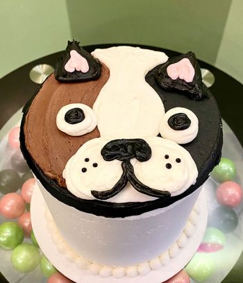 Dog Layer Cake - Boston Terrier