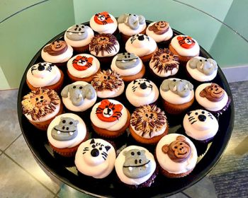 Decorated Cupcake Party Tray - Animal Cupcakes