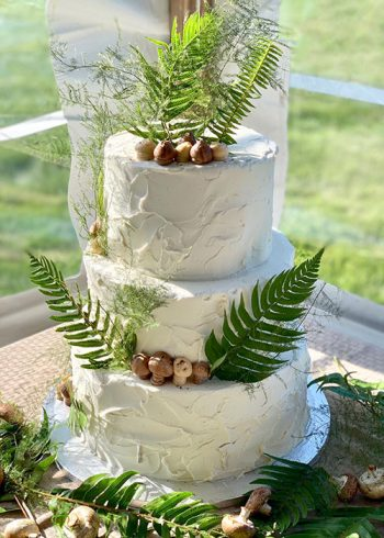 Stucco Wedding Cake, Buttercream Mushrooms - Wedding Cake Venue Gallery