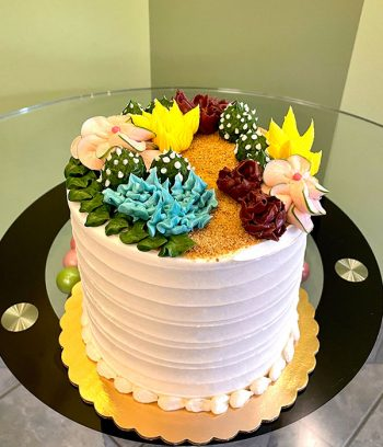 Succulent Layer Cake - Assorted Colors