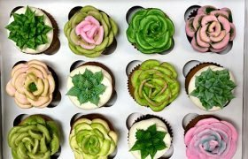 Succulent Cupcakes - Assorted
