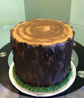 Tree Stump Layer Cake - Top