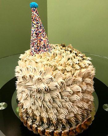 Hedgehog Layer Cake - Back