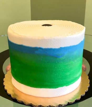 Bounty Paper Towel Layer Cake - Back