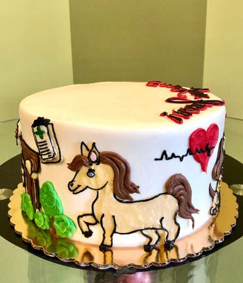 Veterinarian Layer Cake - Side