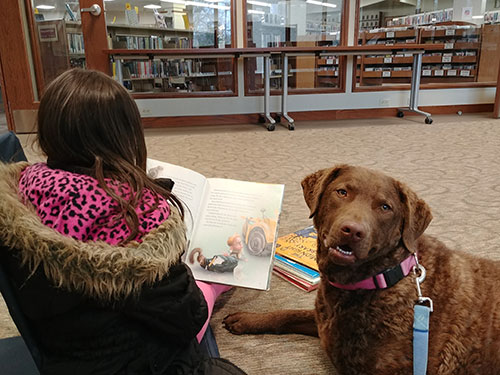 Young girl and dog reading at the library.